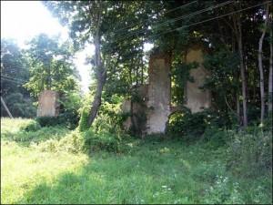 9.Винокурня (руины)